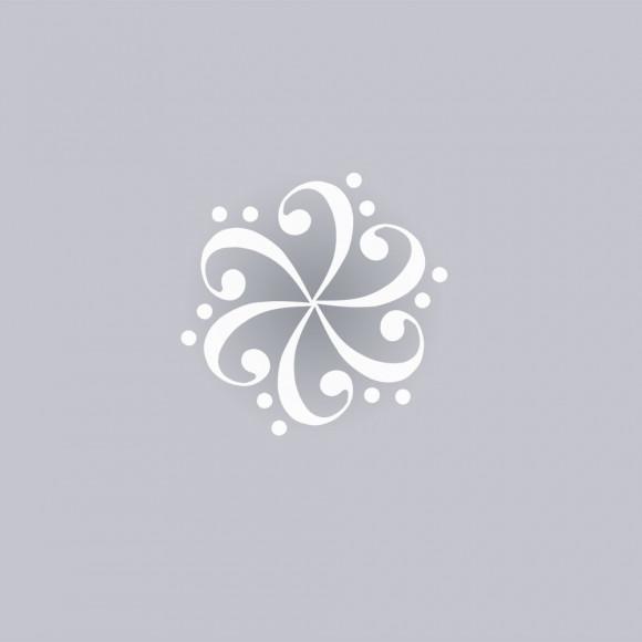 AAMM – 29è Cicle de Concerts de Manlleu