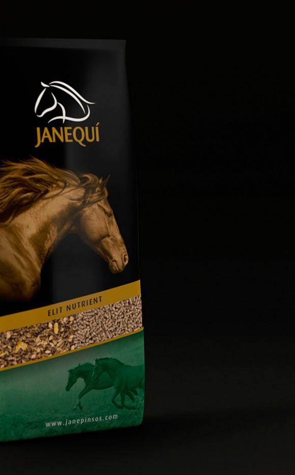 Pinsos Jané